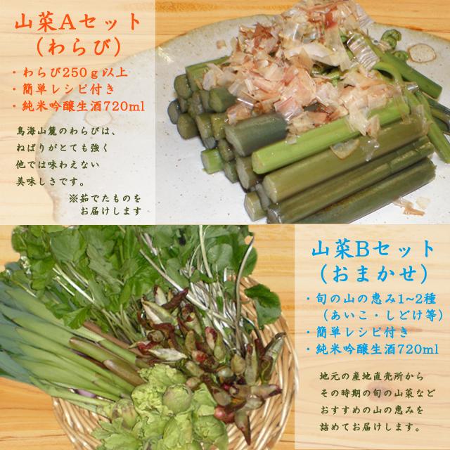 旬の山菜セット